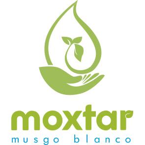 logo-moxtar